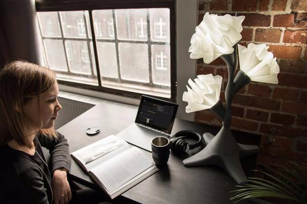 蜀葵花型3D打印灯