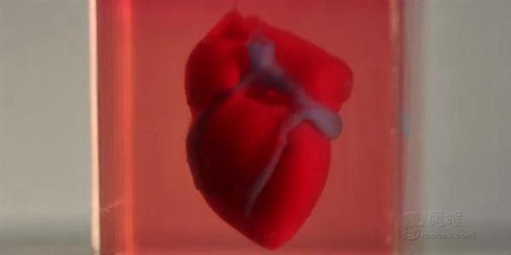 科学家使用患者的细胞3D打印一颗微型的活体心脏