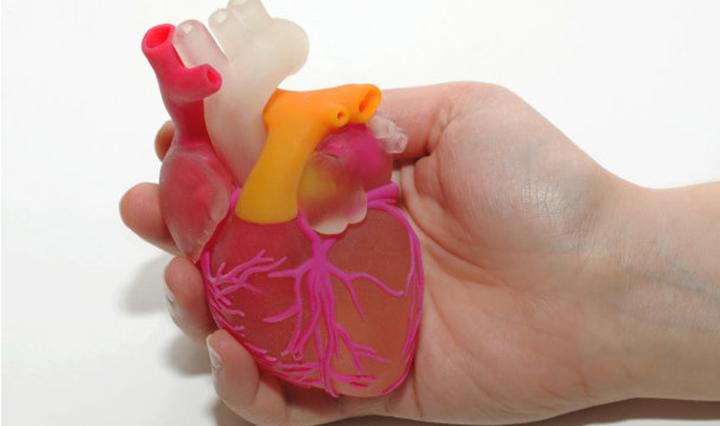 卡内基研究人员开发全尺寸生物3D打印人体模型的新方法