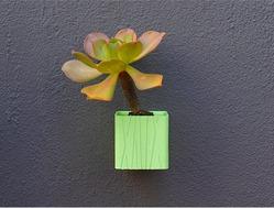 墙上的花园系列之花瓶1