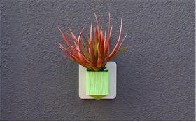 墙上的花园系列之花瓶2